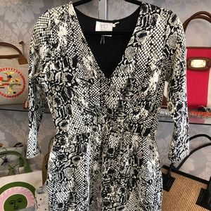 HD IN PARIS Black & Cream 3/4 Sleeve Stretch Dress